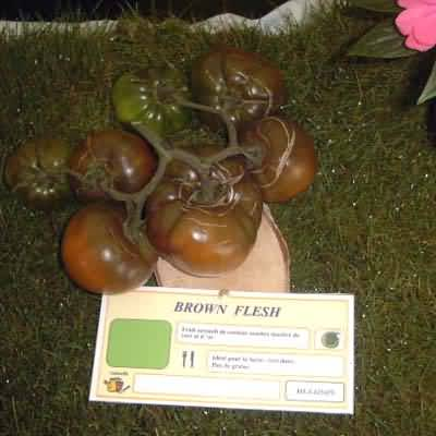 Tomate Brown Flesh