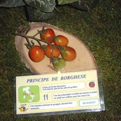 tomate Principe de Borghese