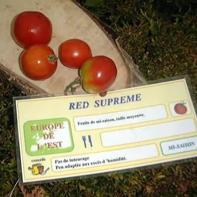 tomate Red supreme
