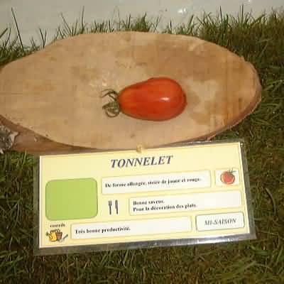 tomate Tonnelet
